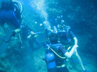 diving-clubs-in-crete-44982