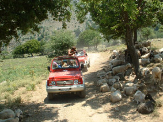 jeep%20safari%20kreta%2009062005[1]