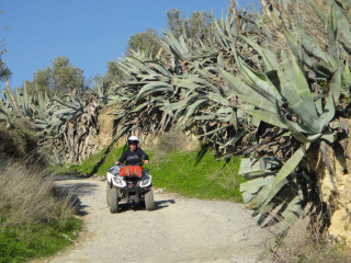 20140109-All-terrain-vehicle-quad-bike-on-crete