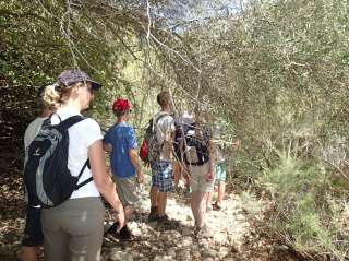 hiking on crete 1259