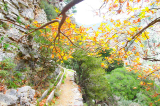 02-Unique-walks-through-the-beautiful-scenery-of-untouched-Crete-greece