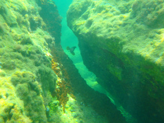 03-Dive-Center-in-Crete