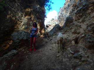 03-unknown-crete-2016-7811