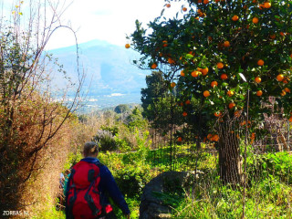 04-Discover-walking-on-crete