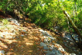 04-walking-tours-+-crete