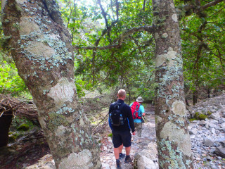 31-hiking-in-west-Crete-Hiking-the-Imbros-Gorge