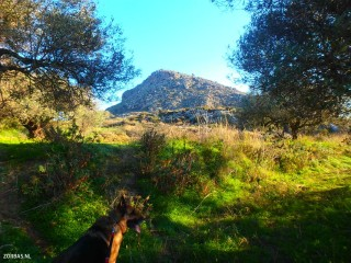 hiking roads in crete 3340