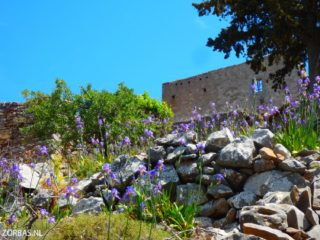 discover walking in crete 8770