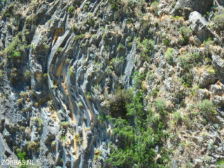 05-samaria-gorge-and-walking-in-crete-6196
