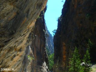 hiking-in-Crete-Samaria-Gorge