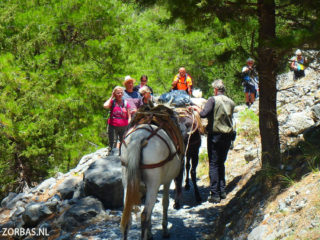 hiking-on-Crete-Samaria-Gorge