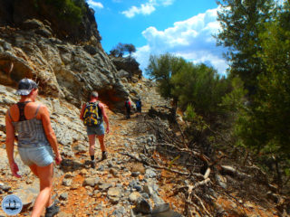 hiking-in-kritsa-crete-126