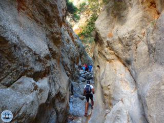 hiking-in-kritsa-crete-46