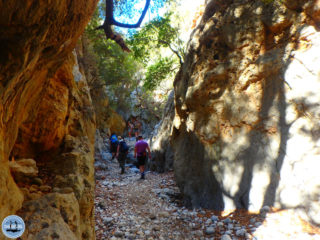hiking-in-kritsa-crete-55