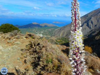 hiking-on-greek-islands-141