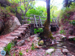mili-gorge-walk-in-crete