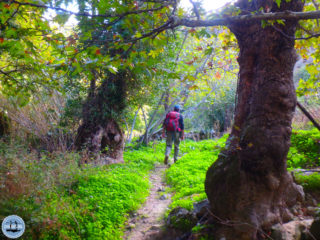 02-hiking-holiday-in-greece-179