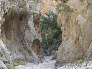 Kreta Kritza Gorge In de kloof