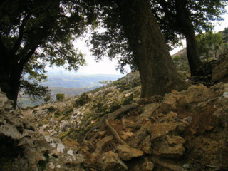 winter-hike-op-kreta-2011