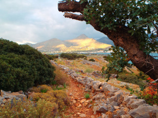 211112-elounda-crete-walking