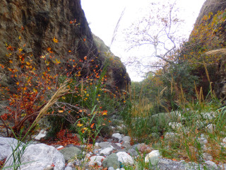 hike holiday in crete 3854