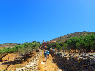02-walking-holidays-in-greece-9567