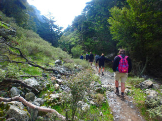 31-Hiking-the-Imbros-Gorge-crete-greece