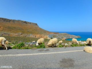 cooking and holidays in crete 5333