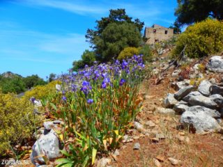 discover walking in crete 8764