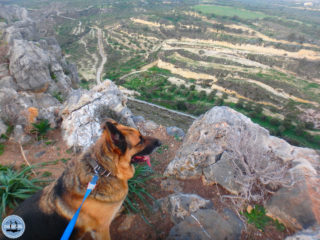 hiking-in-crete-for-a-week-172
