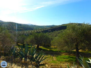 hiking-trails-in-crete-with-apple-iphone-motion-x